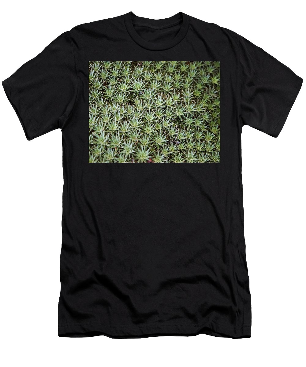 Cactus Men's T-Shirt (Athletic Fit) featuring the photograph Feild Of Stars by Dean Triolo