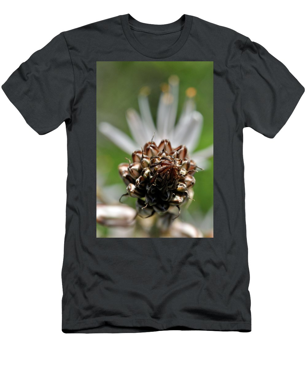Nature Men's T-Shirt (Athletic Fit) featuring the photograph at Lachish 1 by Dubi Roman