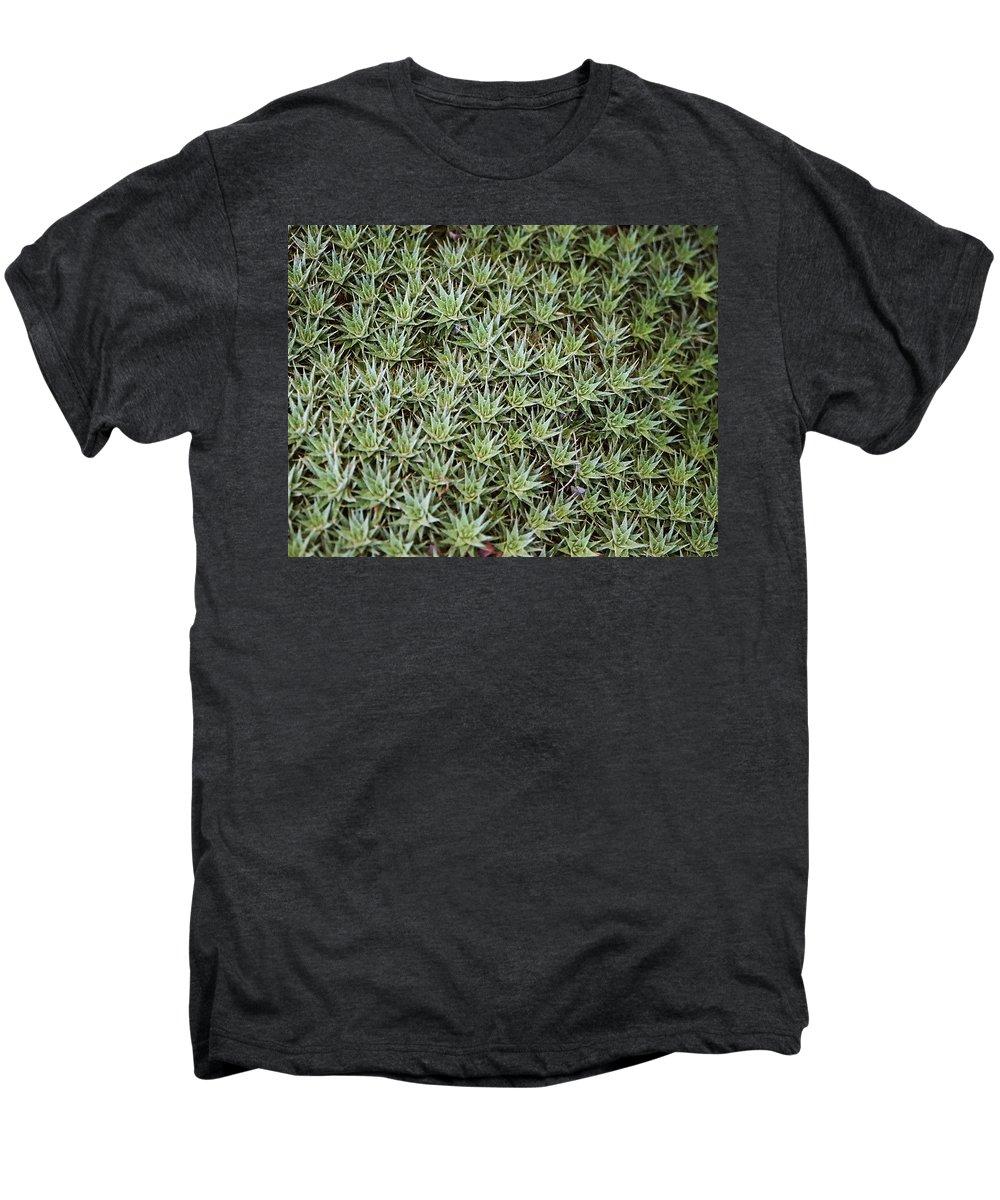 Cactus Men's Premium T-Shirt featuring the photograph Feild Of Stars by Dean Triolo