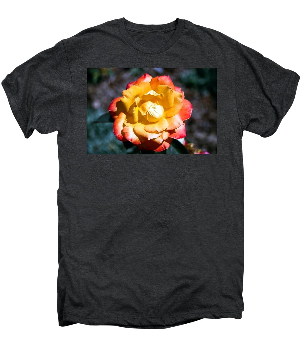 Rose Men's Premium T-Shirt featuring the photograph Red Tipped Yellow Rose by Dean Triolo