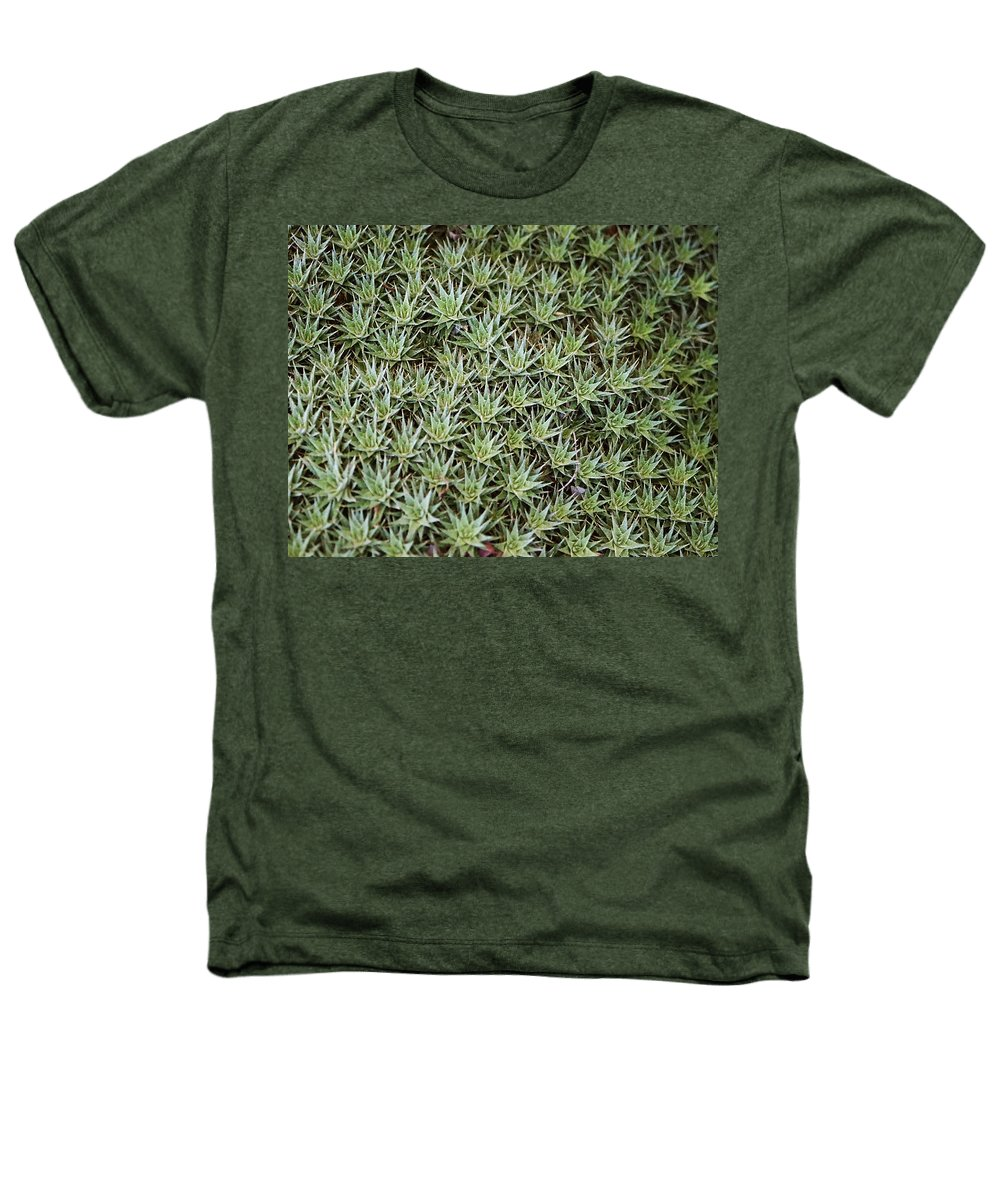 Cactus Heathers T-Shirt featuring the photograph Feild Of Stars by Dean Triolo