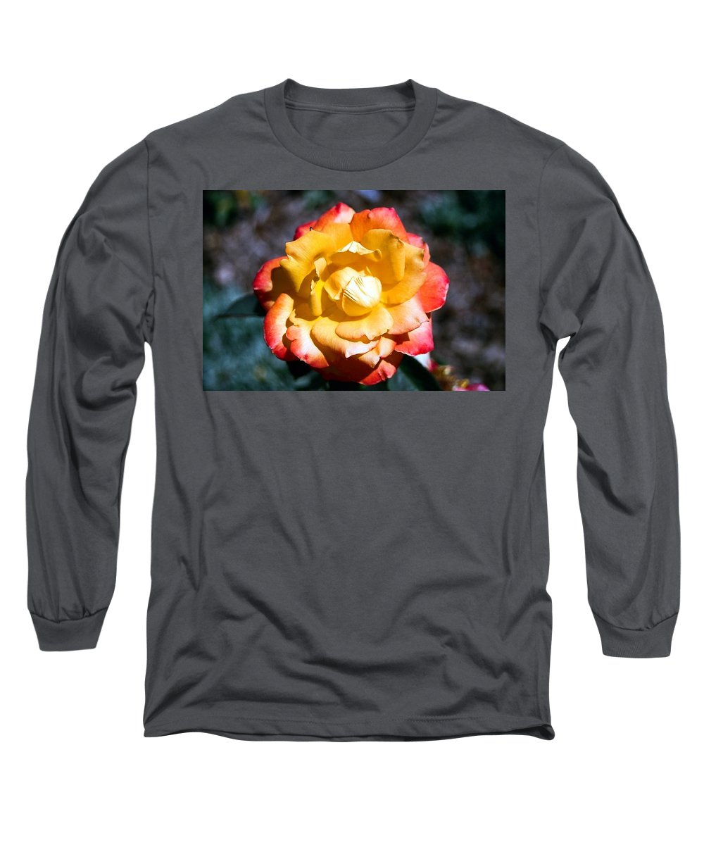 Rose Long Sleeve T-Shirt featuring the photograph Red Tipped Yellow Rose by Dean Triolo
