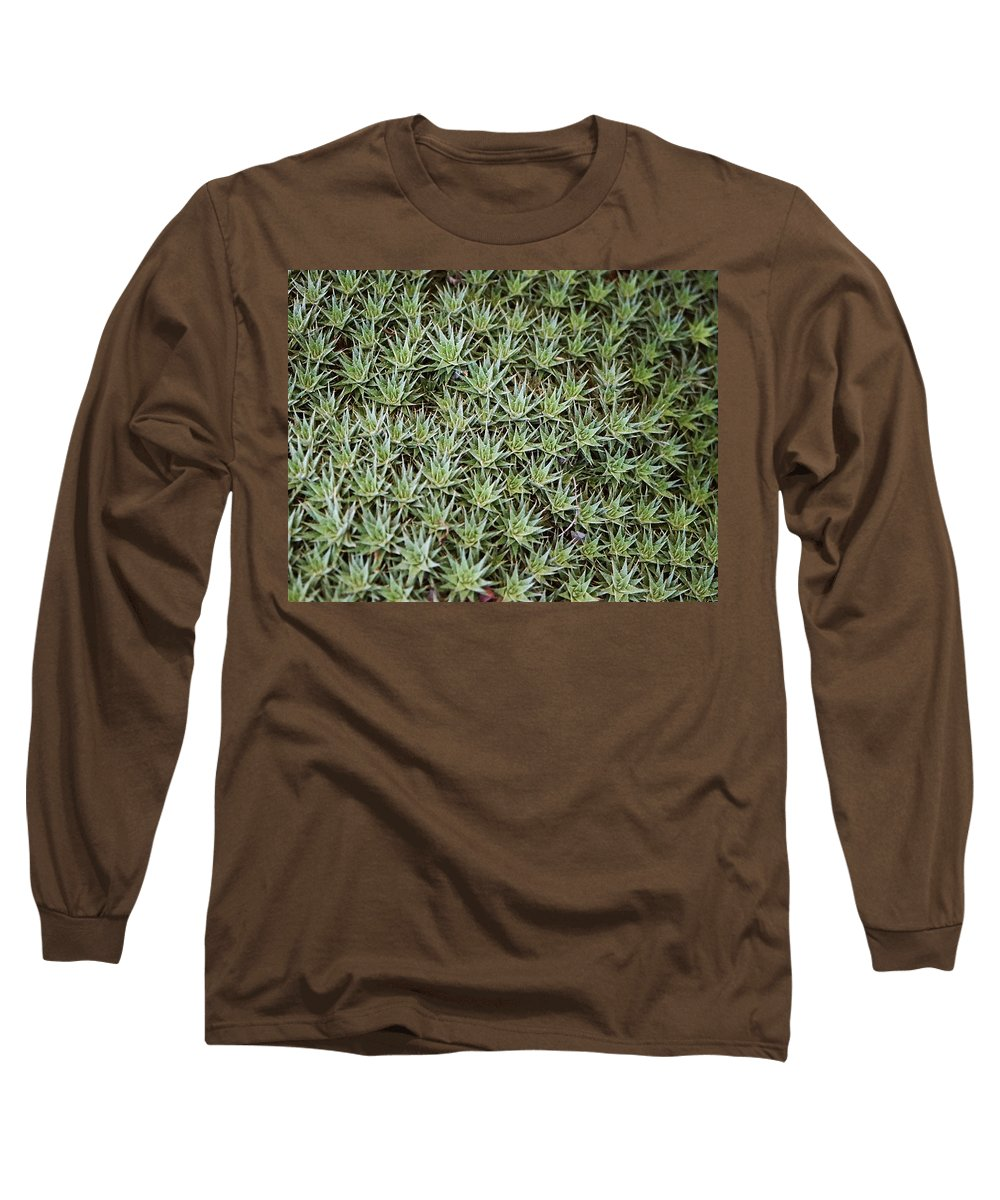 Cactus Long Sleeve T-Shirt featuring the photograph Feild Of Stars by Dean Triolo