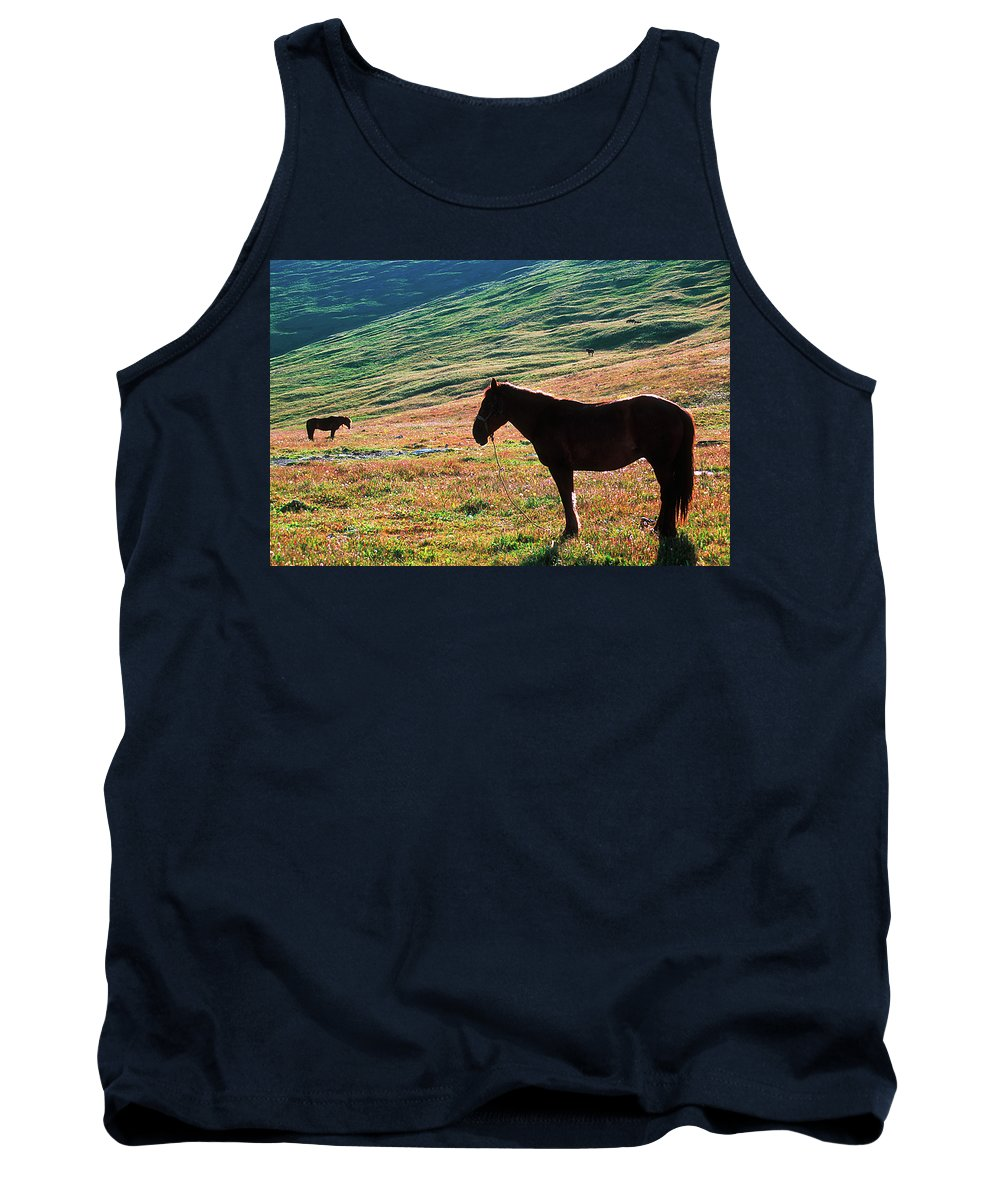 Alone Tank Top featuring the photograph Altay by Konstantin Dikovsky