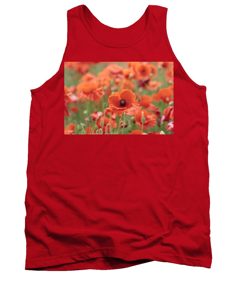 Poppy Tank Top featuring the photograph Poppies H by Phil Crean