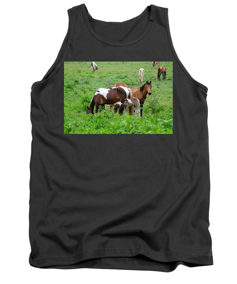 Horse Tank Top featuring the photograph Family Time by Carol Turner