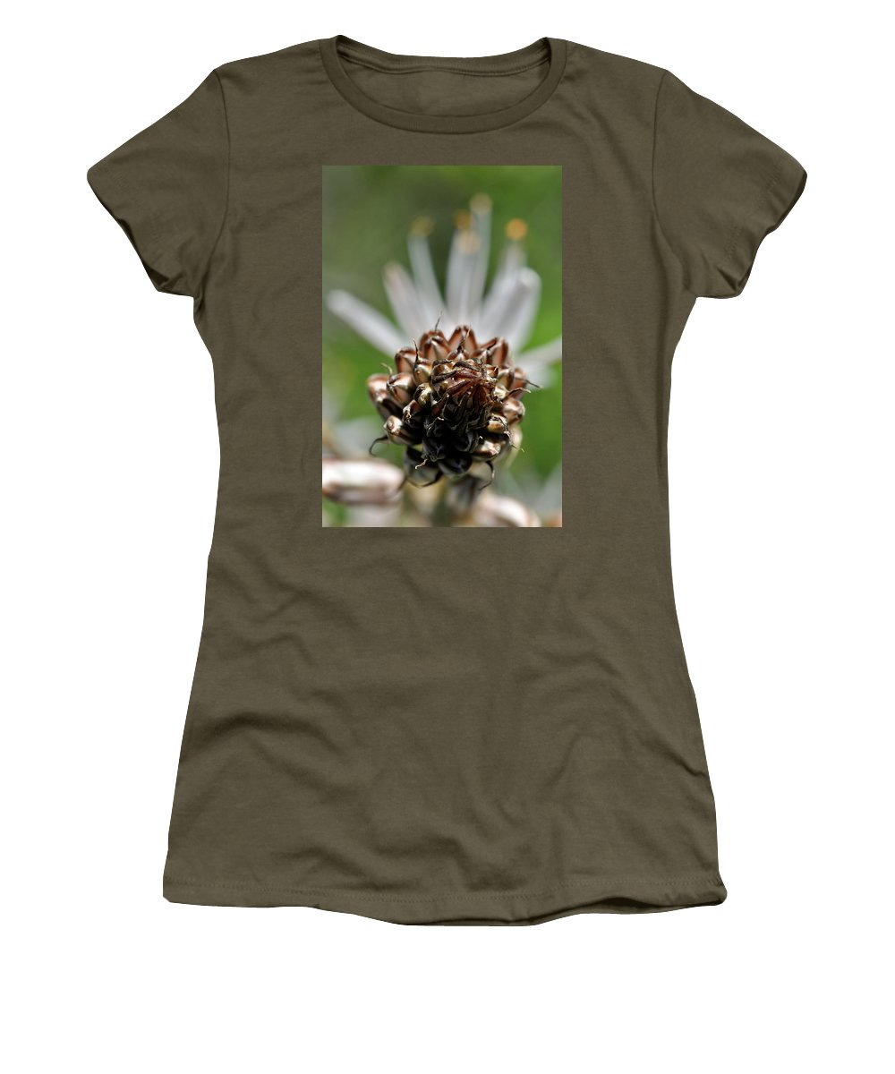 Nature Women's T-Shirt featuring the photograph at Lachish 1 by Dubi Roman