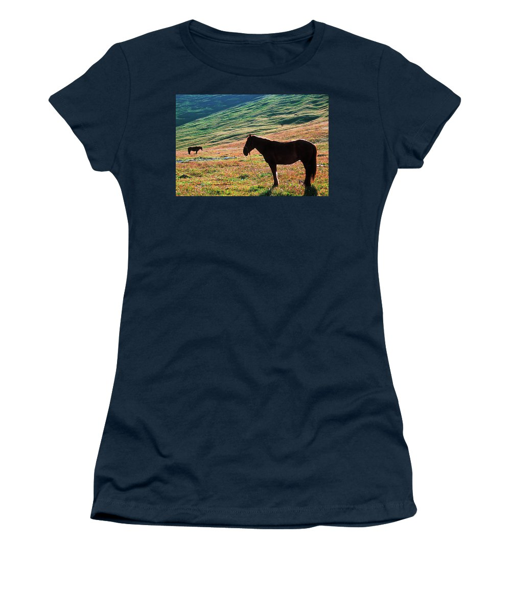 Alone Women's T-Shirt (Athletic Fit) featuring the photograph Altay by Konstantin Dikovsky