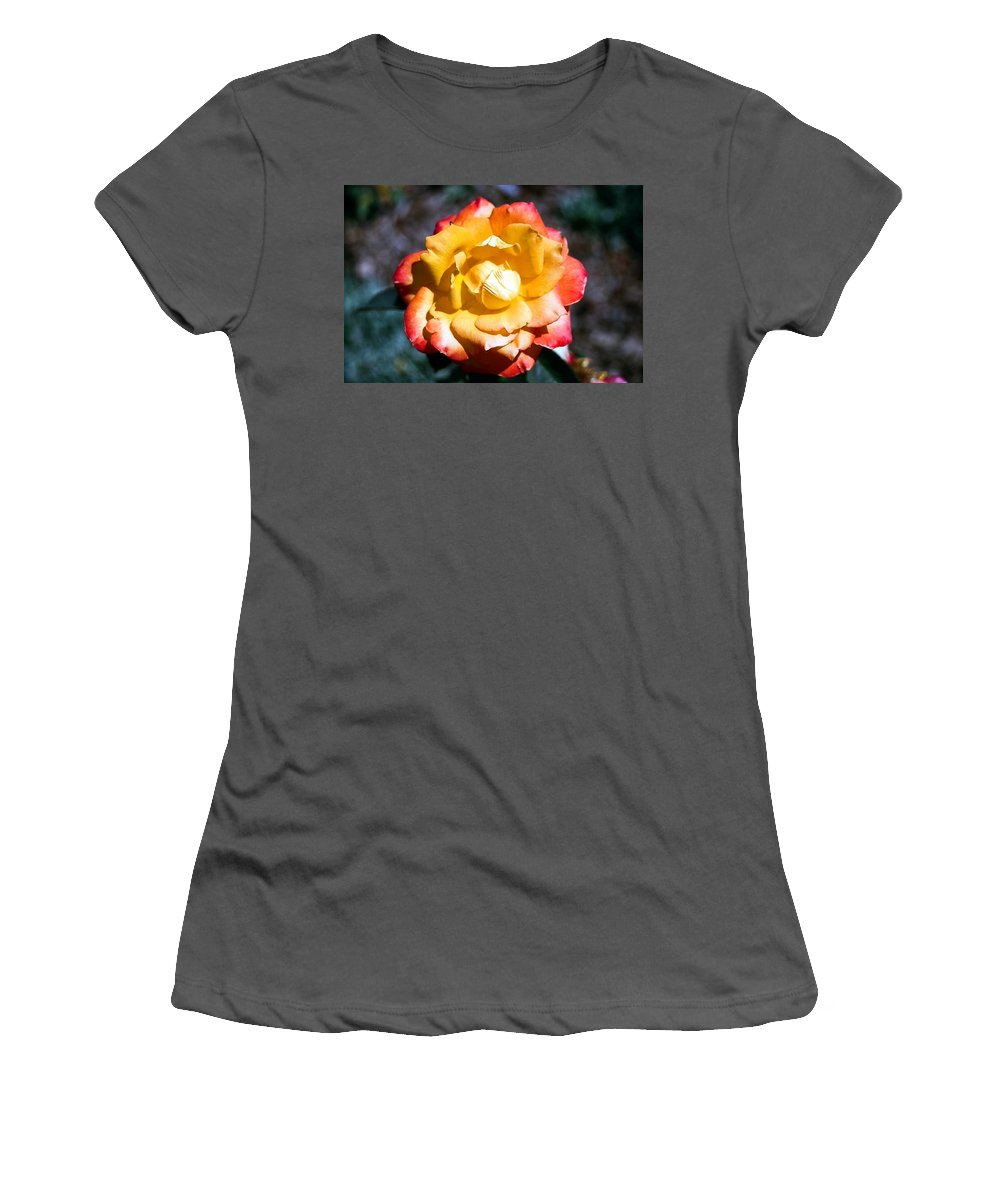 Rose Women's T-Shirt (Athletic Fit) featuring the photograph Red Tipped Yellow Rose by Dean Triolo
