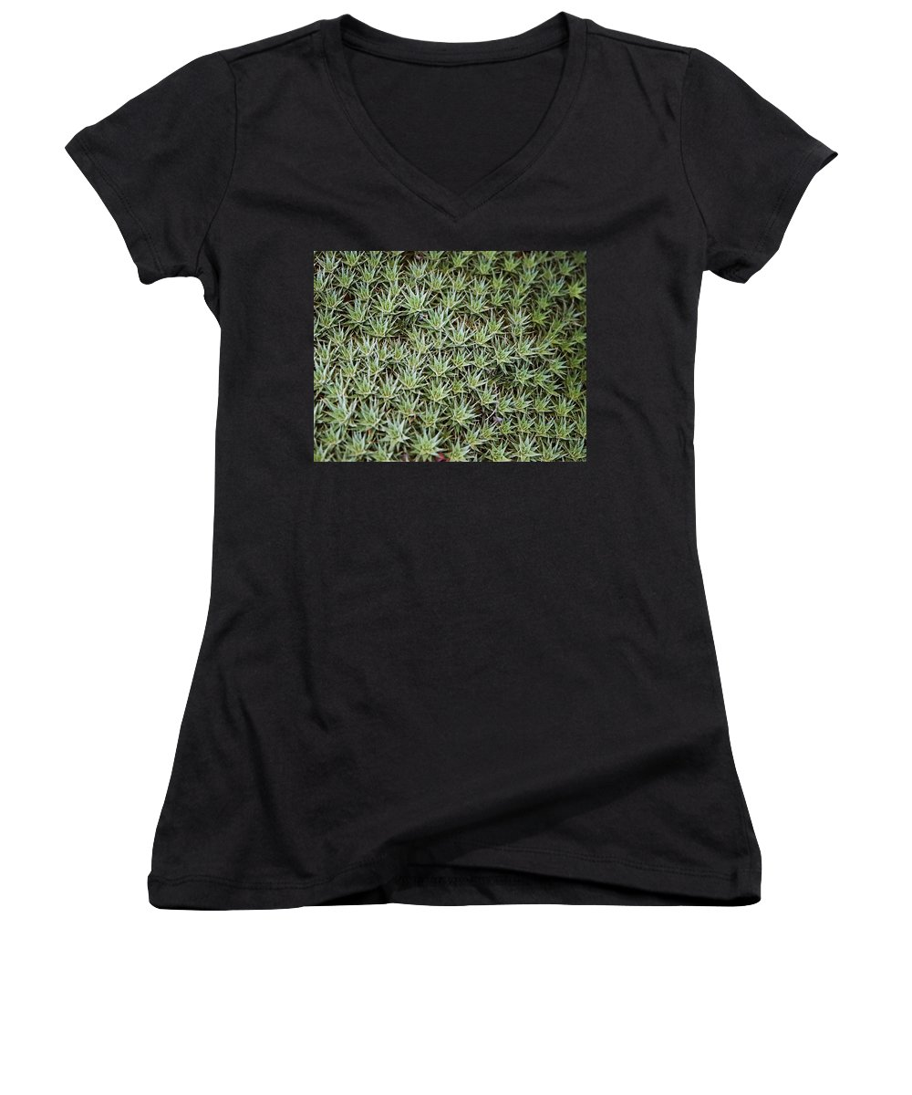 Cactus Women's V-Neck T-Shirt featuring the photograph Feild Of Stars by Dean Triolo