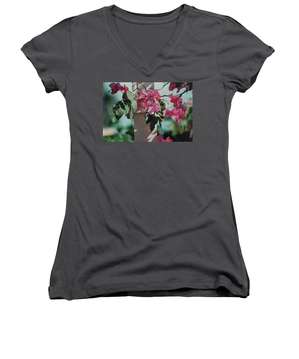 Charity Women's V-Neck T-Shirt featuring the photograph Bouganvillea by Mary-Lee Sanders