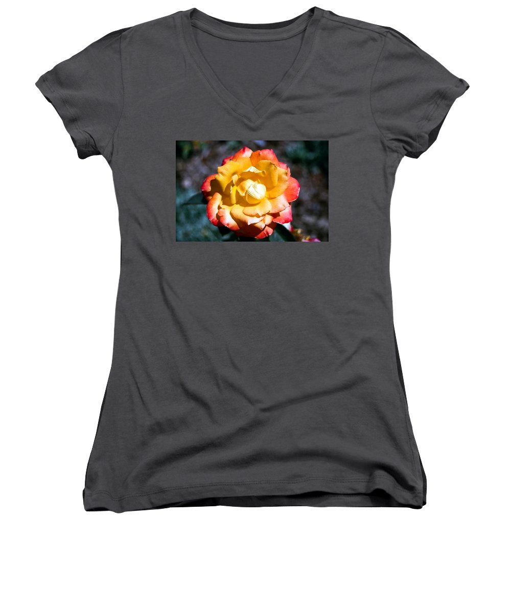 Rose Women's V-Neck T-Shirt featuring the photograph Red Tipped Yellow Rose by Dean Triolo