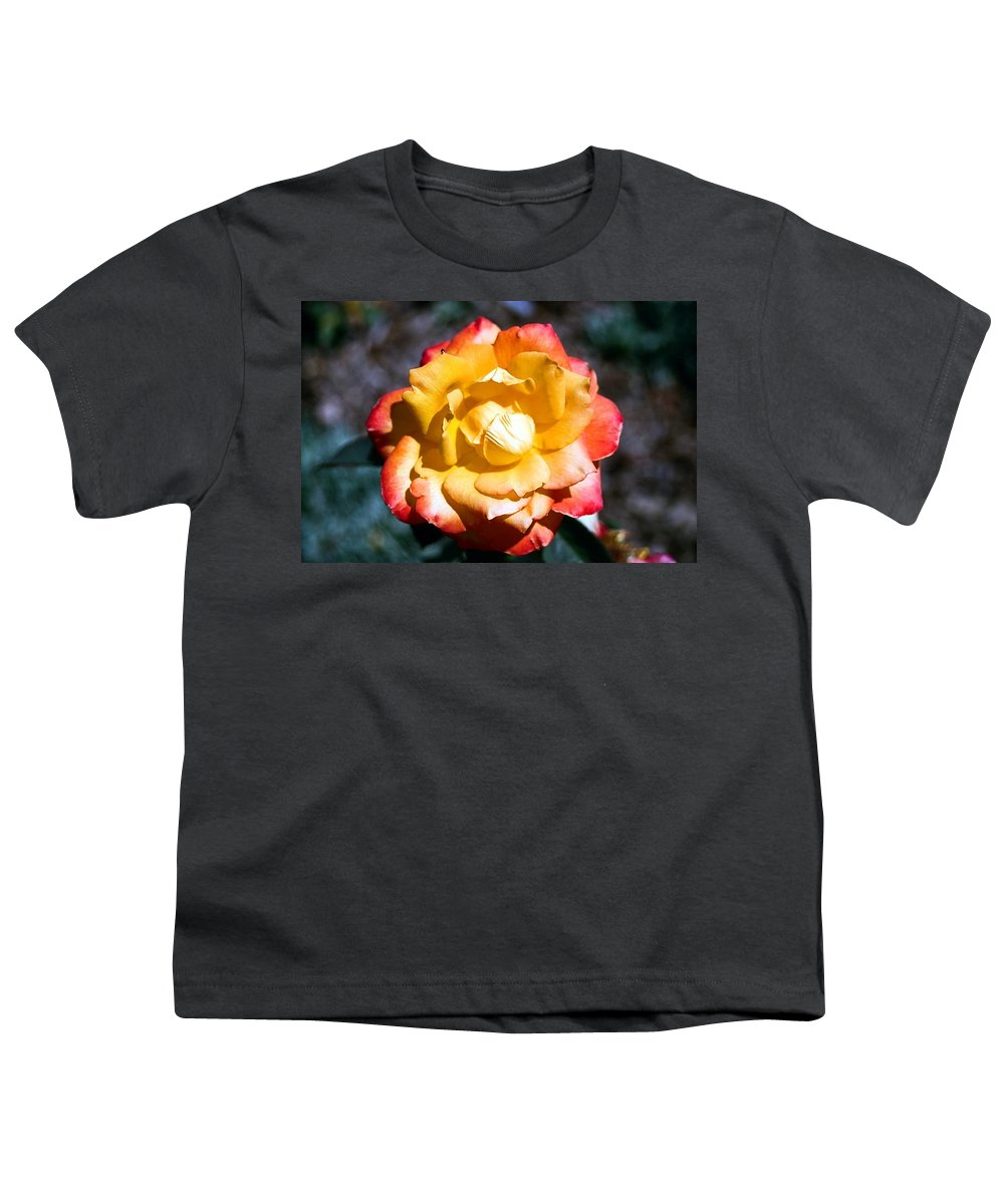 Rose Youth T-Shirt featuring the photograph Red Tipped Yellow Rose by Dean Triolo