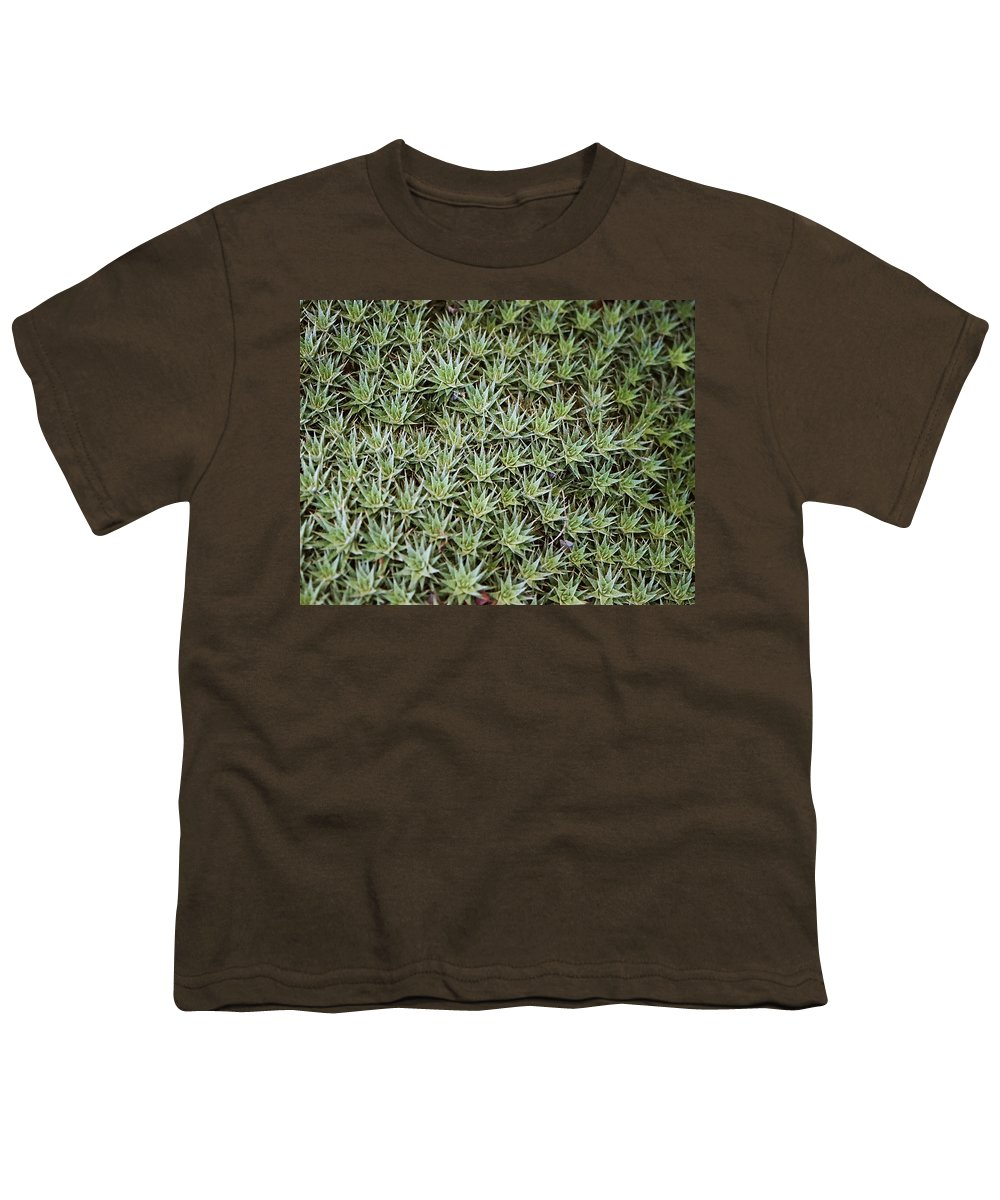 Cactus Youth T-Shirt featuring the photograph Feild Of Stars by Dean Triolo