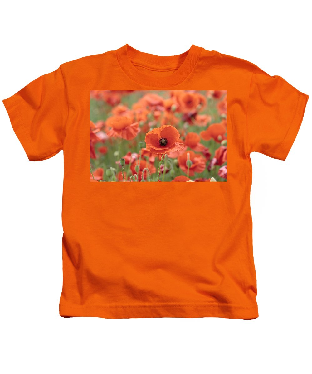 Poppy Kids T-Shirt featuring the photograph Poppies H by Phil Crean