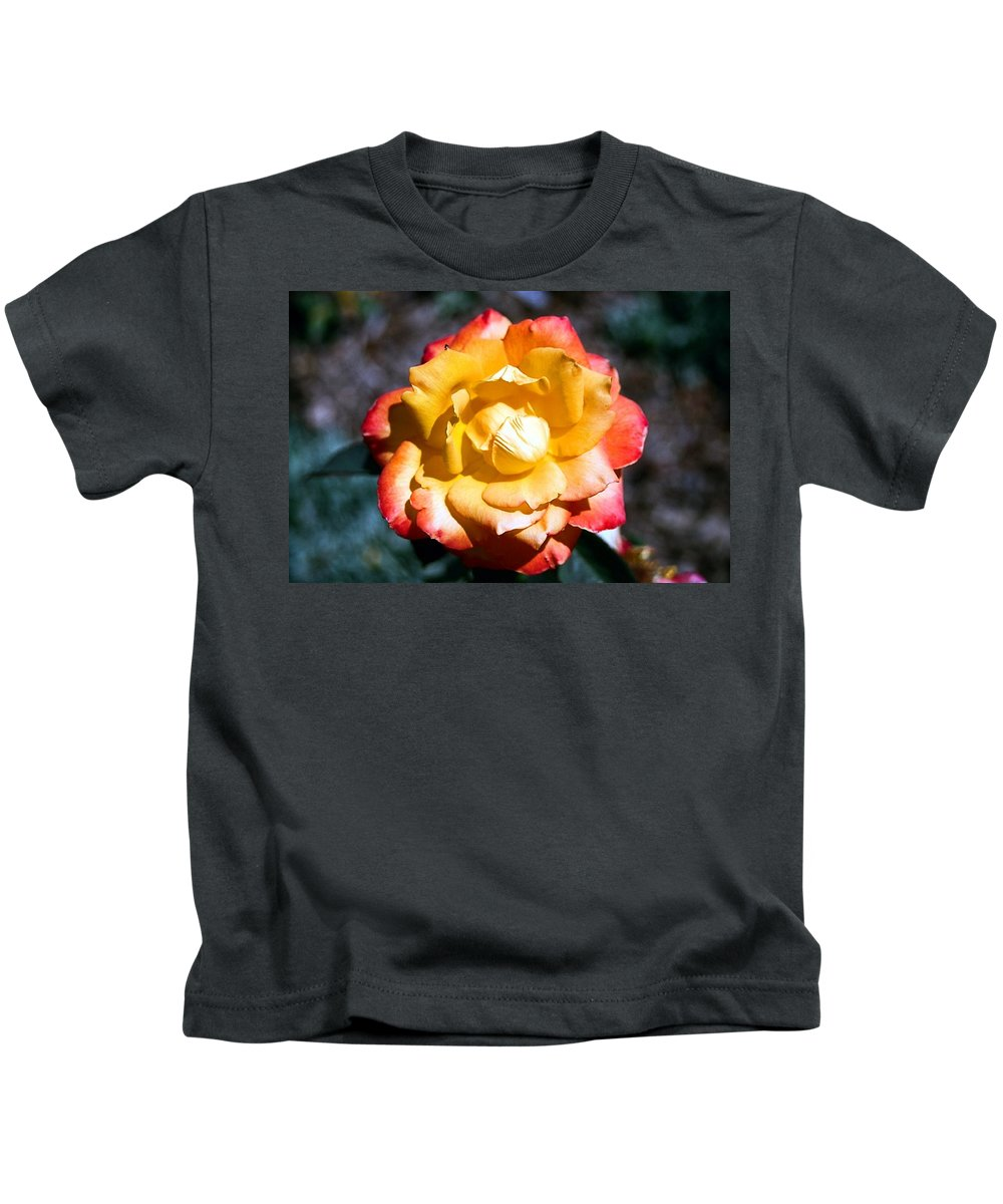 Rose Kids T-Shirt featuring the photograph Red Tipped Yellow Rose by Dean Triolo