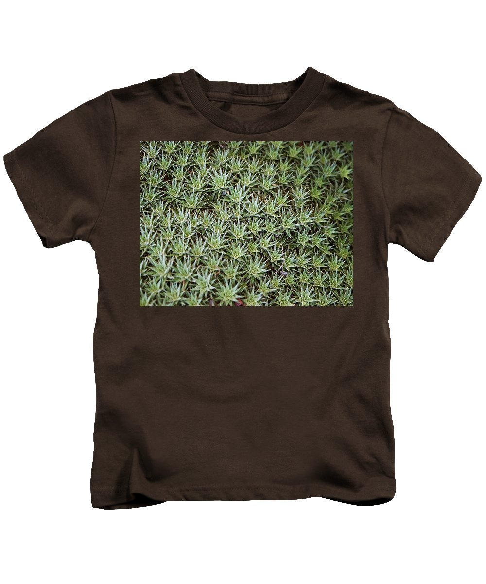 Cactus Kids T-Shirt featuring the photograph Feild Of Stars by Dean Triolo