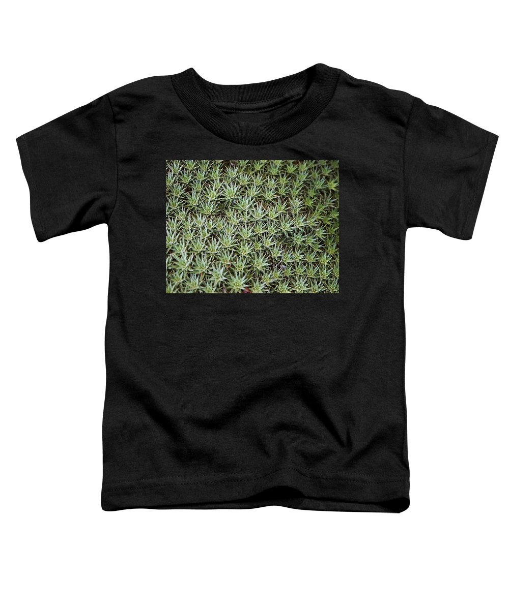 Cactus Toddler T-Shirt featuring the photograph Feild Of Stars by Dean Triolo