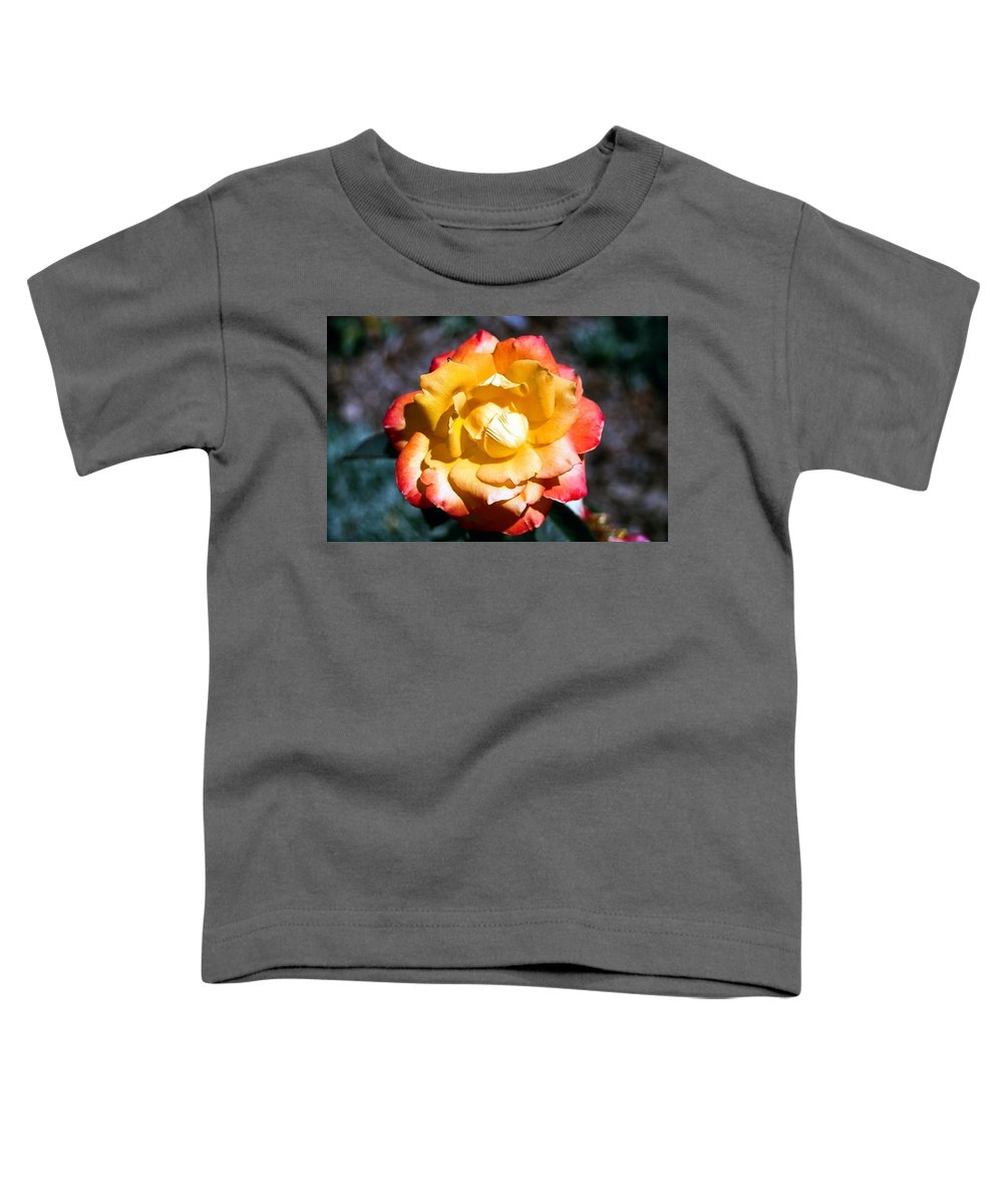 Rose Toddler T-Shirt featuring the photograph Red Tipped Yellow Rose by Dean Triolo