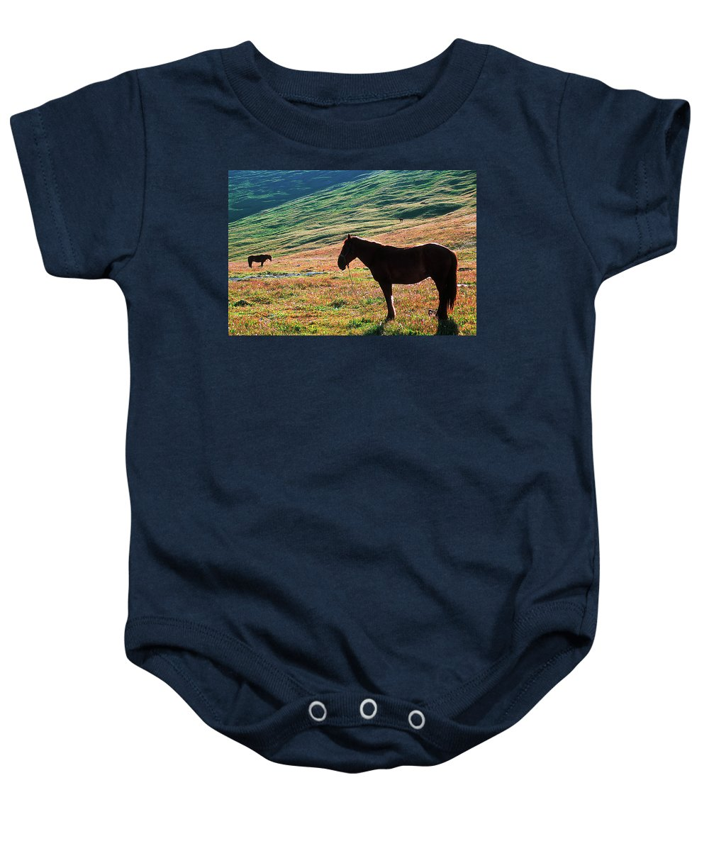Alone Baby Onesie featuring the photograph Altay by Konstantin Dikovsky