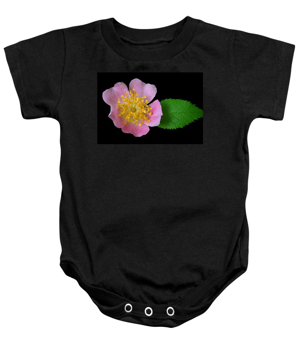 Primrose Baby Onesie featuring the photograph Prim On Black by Kristin Elmquist