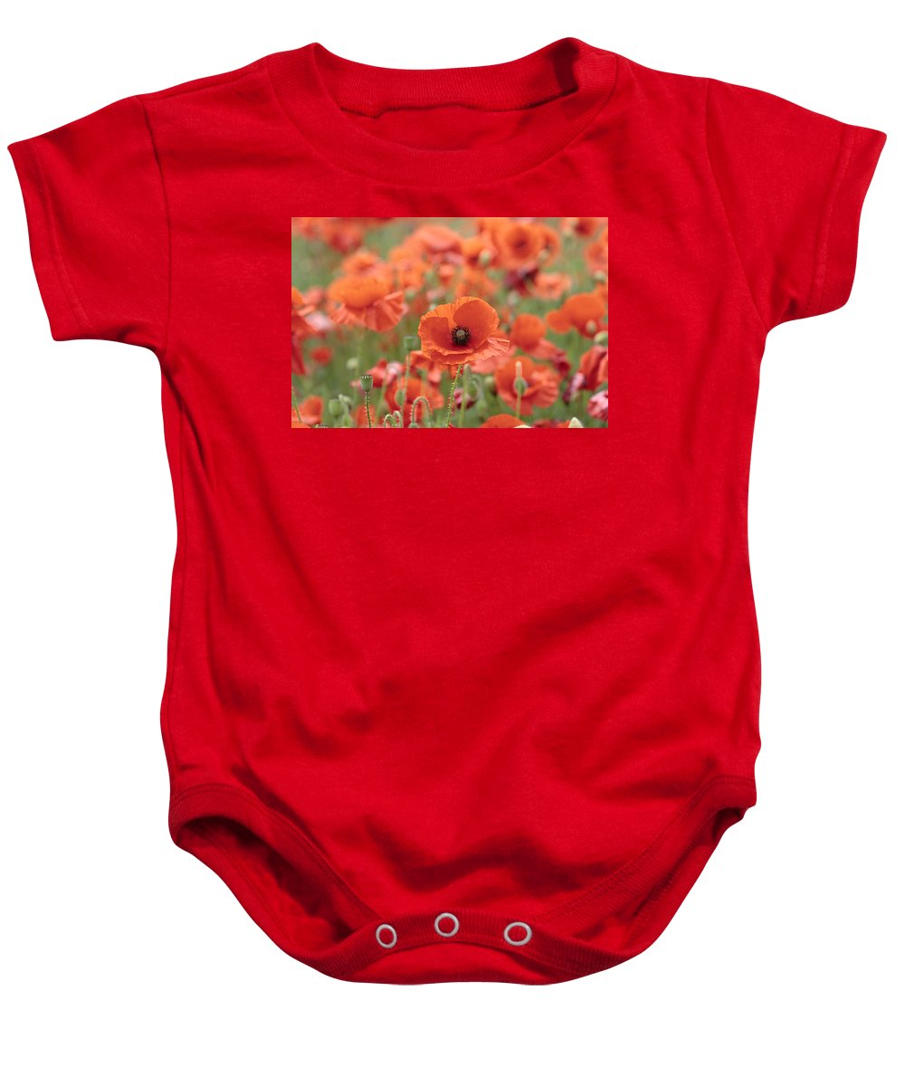Poppy Baby Onesie featuring the photograph Poppies H by Phil Crean