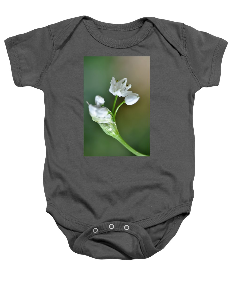 Lachish Baby Onesie featuring the photograph White Blossom 3 by Dubi Roman