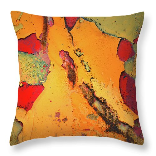 Urban Throw Pillow featuring the photograph Aging In Colour 6 by Tara Turner
