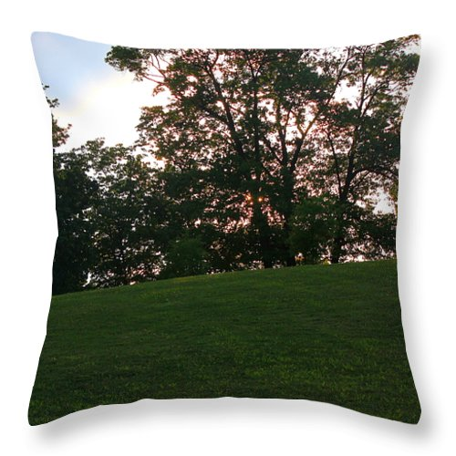 Park Throw Pillow featuring the photograph Beautiful Day In The Park by Carol Turner