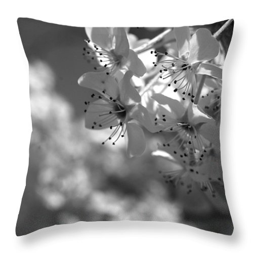 Flowers Throw Pillow featuring the photograph Blossoms by Jessica Wakefield