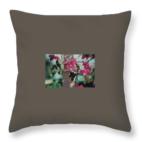 Charity Throw Pillow featuring the photograph Bouganvillea by Mary-Lee Sanders