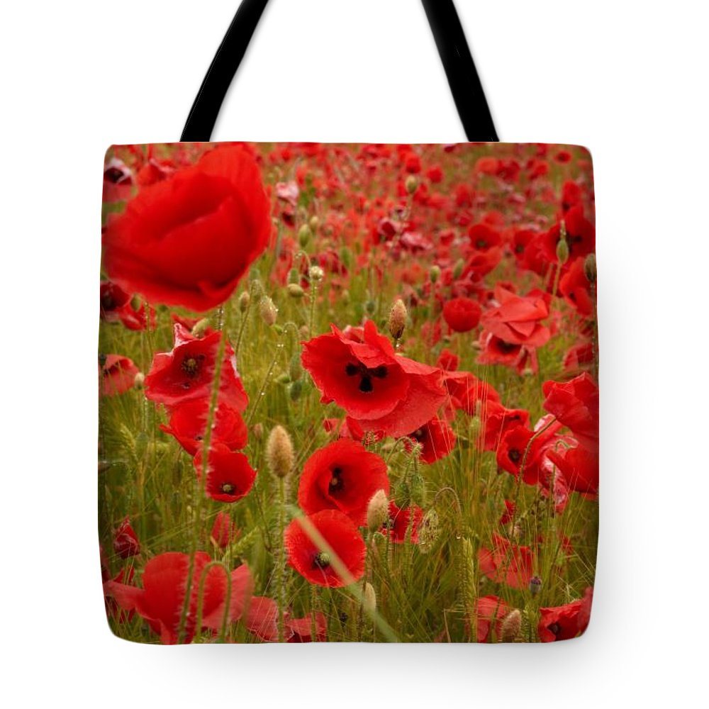 Lehtokukka Tote Bag featuring the photograph Red Poppies 4 by Jouko Lehto
