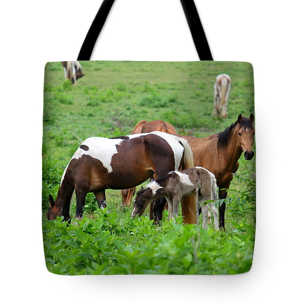 Horse Tote Bag featuring the photograph Family Time by Carol Turner