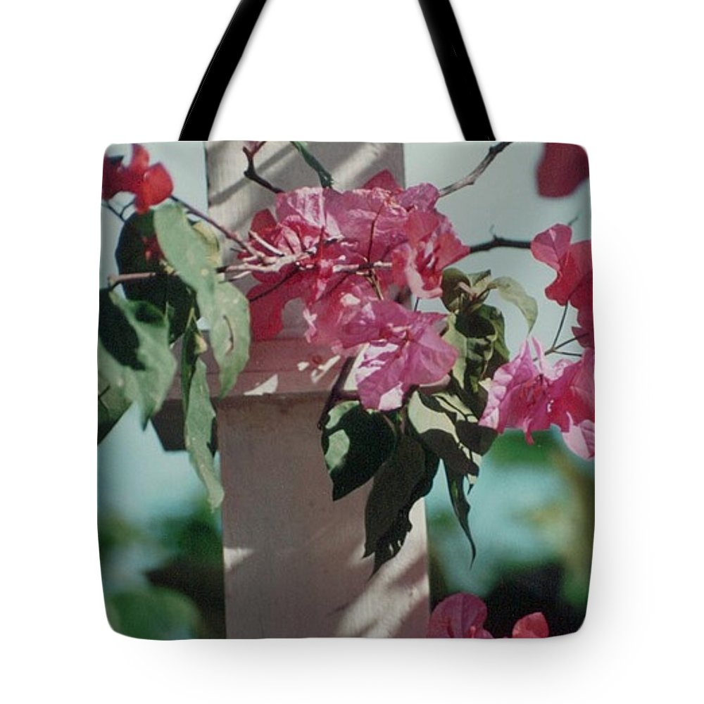 Charity Tote Bag featuring the photograph Bouganvillea by Mary-Lee Sanders