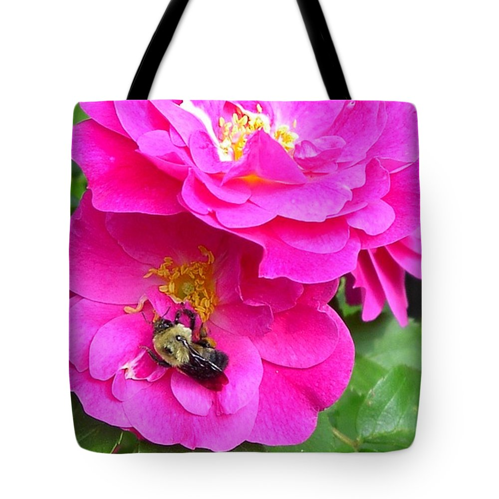 Charity Tote Bag featuring the photograph Jc And Bee by Mary-Lee Sanders