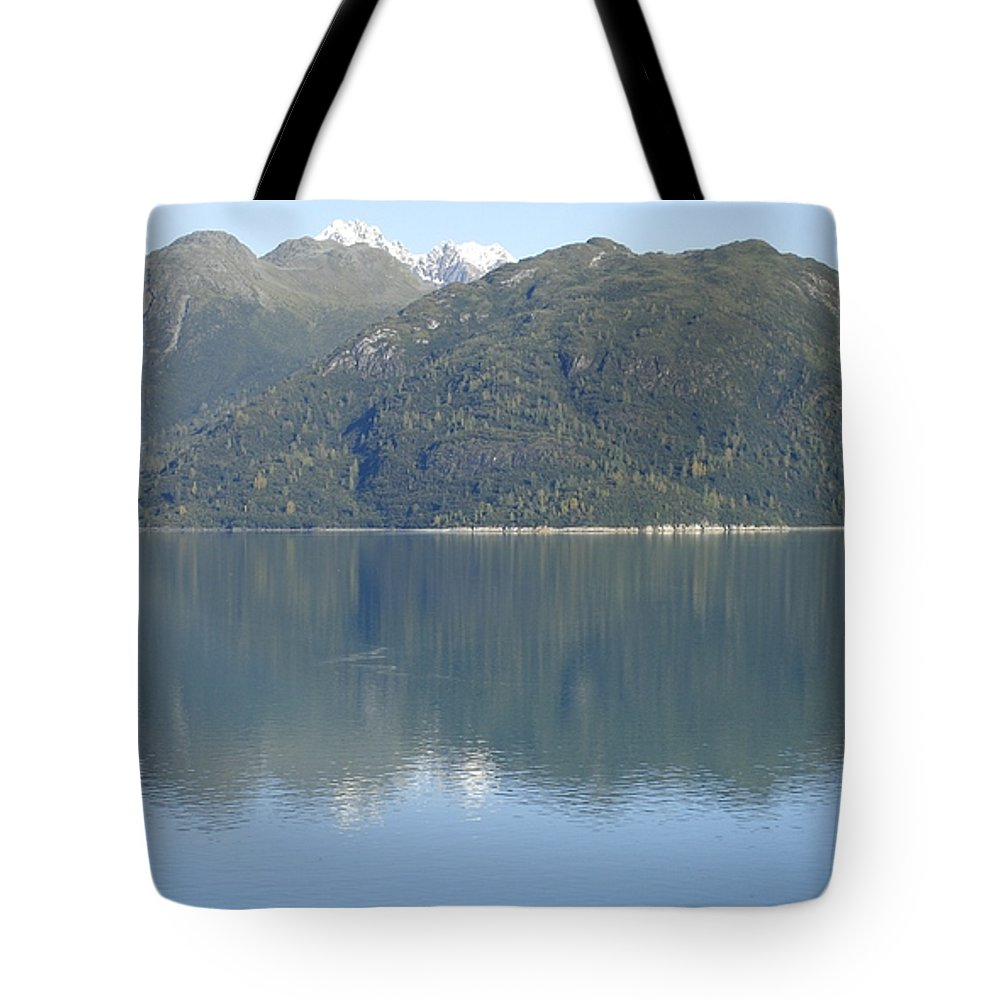 Glacier Bay Tote Bag featuring the photograph Reflective Moment In Glacier Bay by James E Weaver