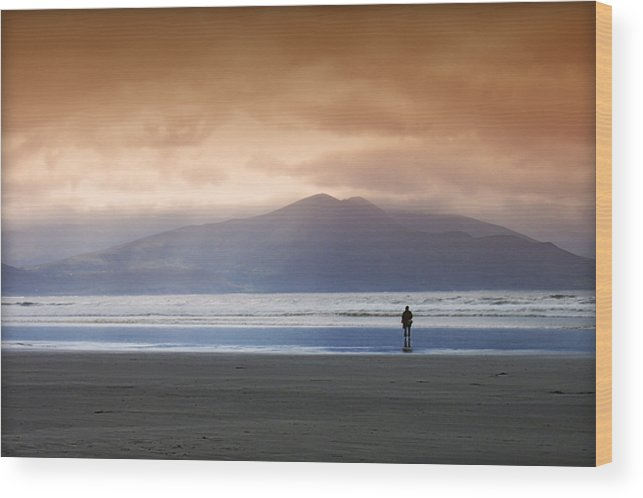 Beach Wood Print featuring the photograph Inch Strand by Richard Allen