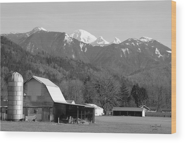 Black Wood Print featuring the photograph Mt. Baker Wine Country by J D Banks