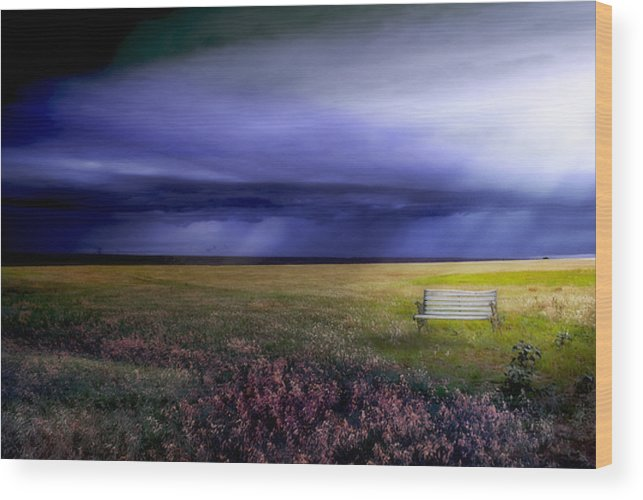 Prairie Wood Print featuring the photograph What If... by Yvonne Emerson