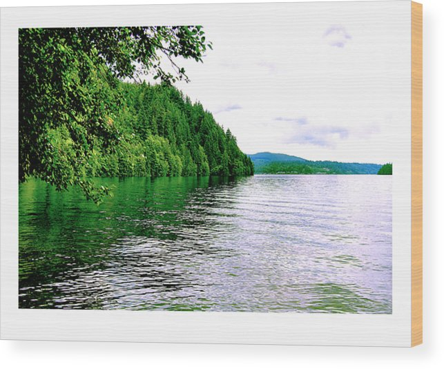 Lake Wood Print featuring the photograph Green Lake by J D Banks