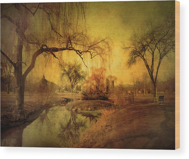 Skaha Park Wood Print featuring the photograph Golden Winter Days by Tara Turner