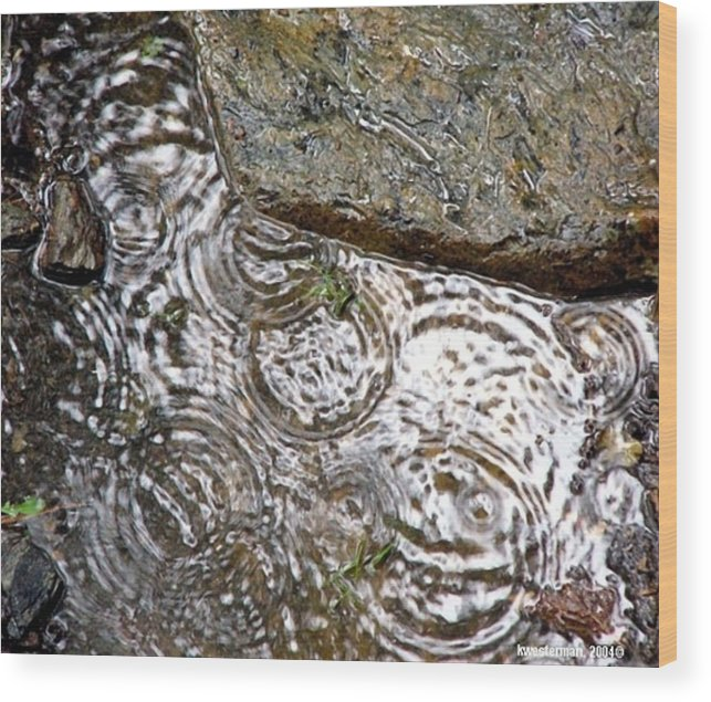 Rain Wood Print featuring the photograph Circles Of Water by Kenna Westerman
