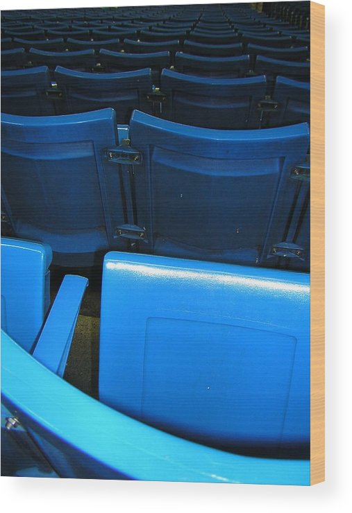 Blue Jays Wood Print featuring the photograph Blue Jay Seats by Heather Weikel