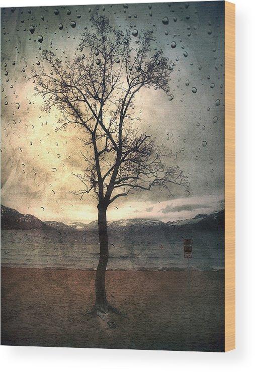 Rain Wood Print featuring the photograph January 12 2010 by Tara Turner