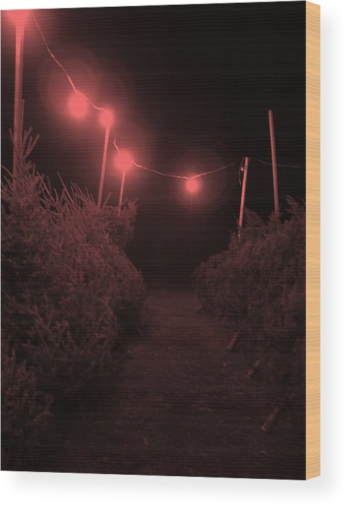 Christmas Tree Lot Wood Print featuring the digital art Red Night by John Bichler