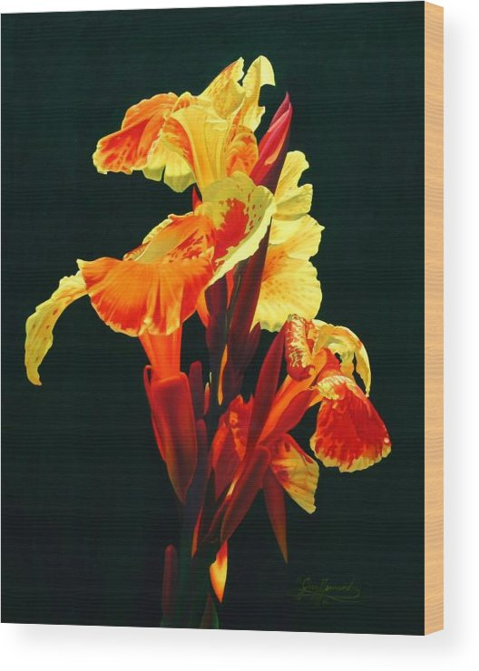 Flowers Wood Print featuring the painting Yellow Cannas by Gary Hernandez