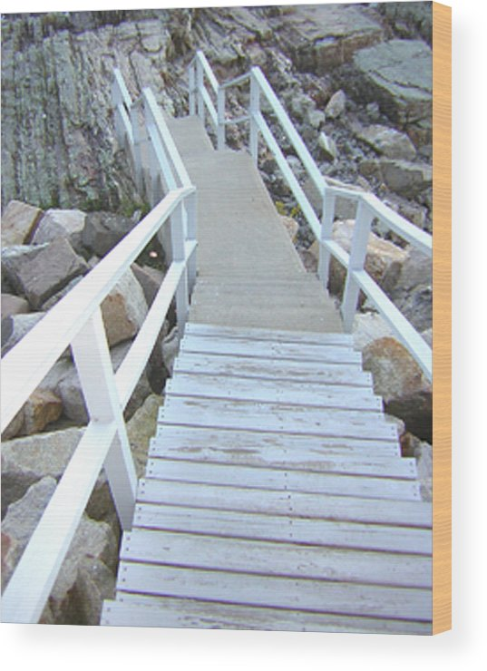Cliff House Wood Print featuring the photograph Cliff House Stairs by Heather Weikel
