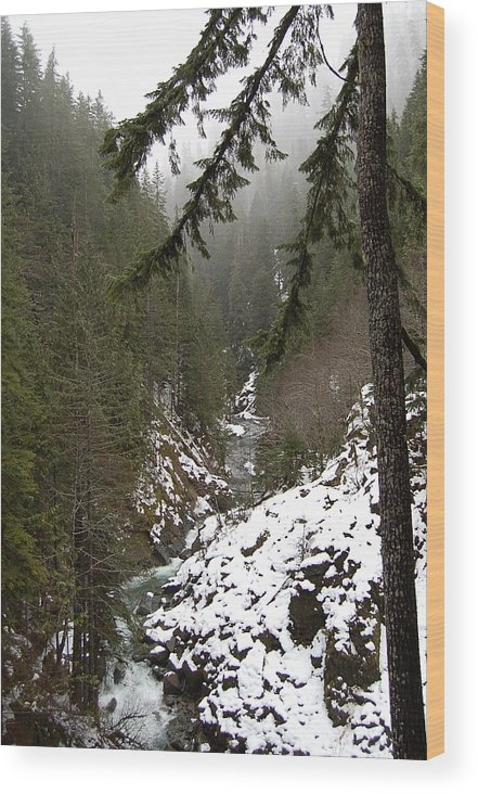 Mountain Wood Print featuring the photograph Winter by J D Banks