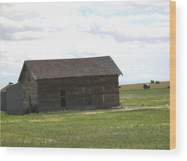 Landscape Wood Print featuring the photograph Grassland Farm by Margaret Fortunato