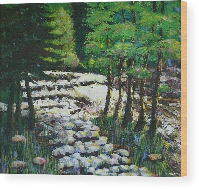 Waterfall Wood Print featuring the painting Sunlit Waterfall by Art Nomad Sandra Hansen